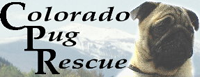 Colorado Pug Rescue